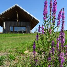 Woodies - Gîte Torèle - PMR - Xertigny - Location de vacances - Xertigny