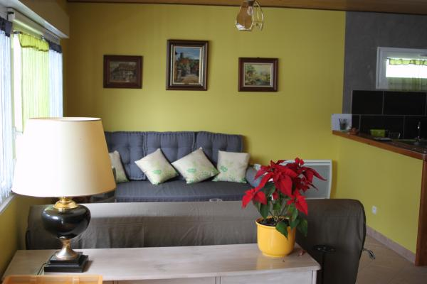 Salon avec TV - Gîte de Ban - Location de vacances - Ban-de-Laveline