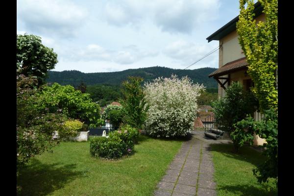 Entrée par le jardin - Location La Petite Raon - Location de vacances - La Petite-Raon