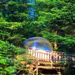 La Bulle - Camping du Mettey - Location de vacances - Vagney