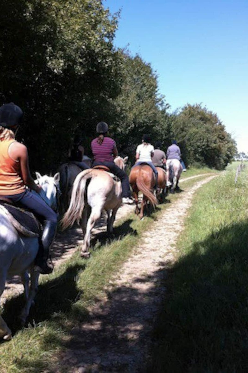 Salon Billard - Apt. Rehaincourt - Location de vacances - Rehaincourt