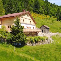 A flanc de coteau bien exposé - Location de vacances - La Bresse