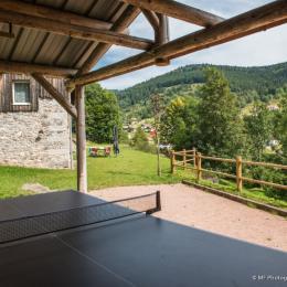 Abri table de ping-pong - Location de vacances - La Bresse