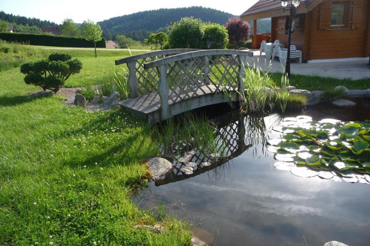 Vue du petit jardin du chalet et du petit étang, dans le grand terrain privatif attenant au chalet - Location de vacances - Gérardmer