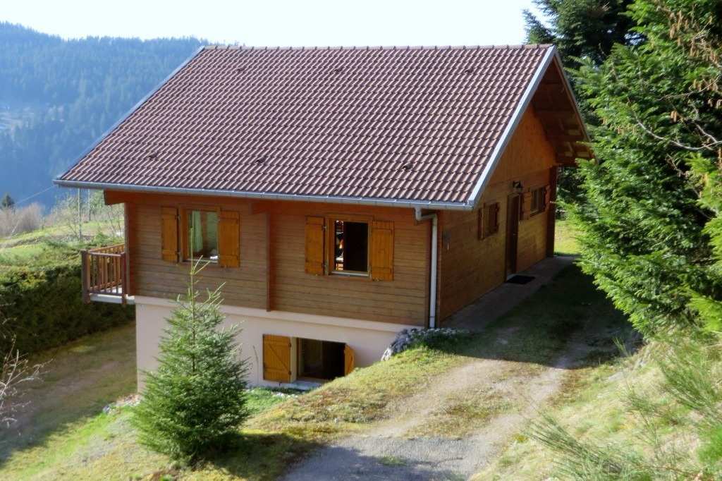 vue du balcon - Location de vacances - Gérardmer