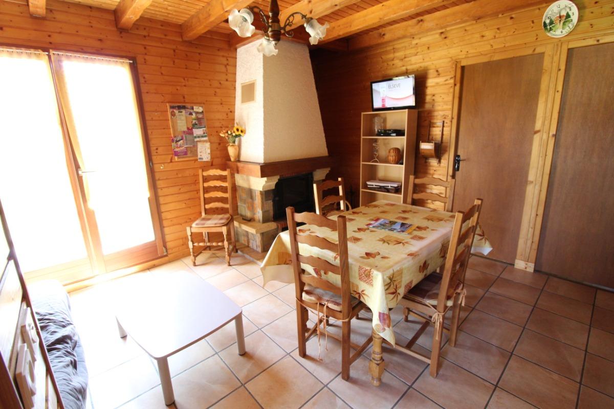 Séjour avec cheminée et télévision - Location de vacances - Barbey-Seroux