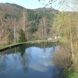 étang  - Location de vacances - Dommartin-lès-Remiremont
