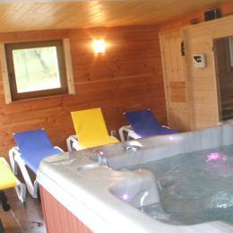 Espace détente : Jacuzzi - Location de vacances - Dommartin-lès-Remiremont