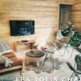 un salon cosy en été comme en hiver - Location de vacances - Barbey-Seroux