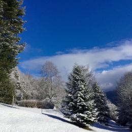 Vue depuis le séjour - Location de vacances - Saint-Nabord