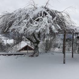 terrasse l'hiver - Location de vacances - Fraize