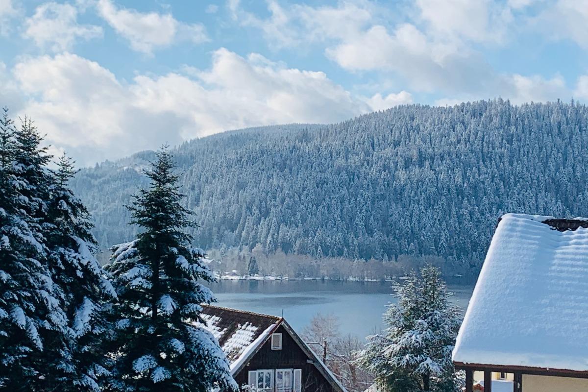 Belle vue lac depuis le gîte - Location de vacances - Gérardmer