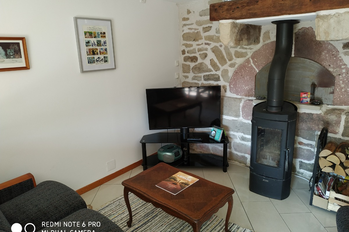 Salon TV avec cheminée - Les Volets Bleus - Location de vacances - Le Val-d'Ajol