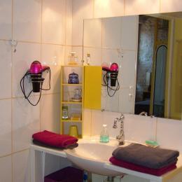 Salle d'eau lavabo - Chambre d'hôtes - Aillant-sur-Tholon