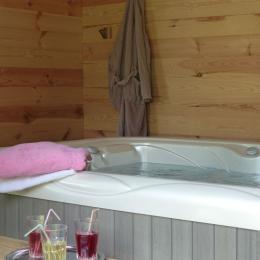 le jacuzzi/spa sans supplément - Chambre d'hôtes - Surba