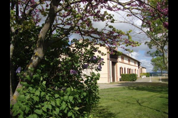 Salon - Location de vacances - Lézat-sur-Lèze
