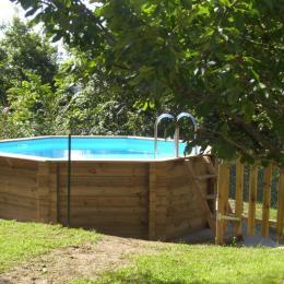 Piscine - Location de vacances - Brie