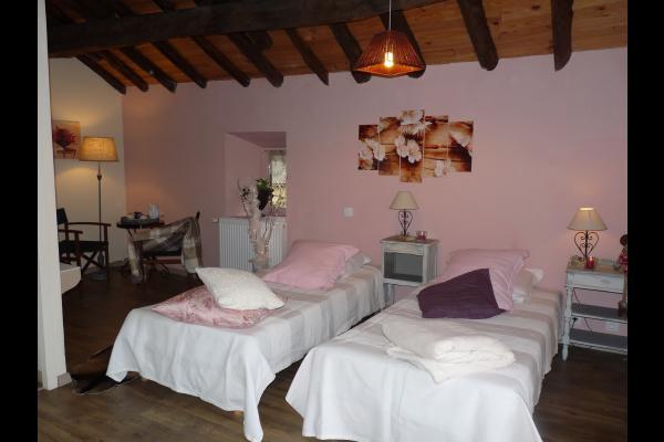grand lit 180 ou 2 lits simples - Chambre d'hôtes - Surba