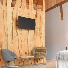 salon tv  - Chambre d'hôtes - Surba