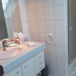 La salle d'eau - Chambre d'hôtes - Bavilliers