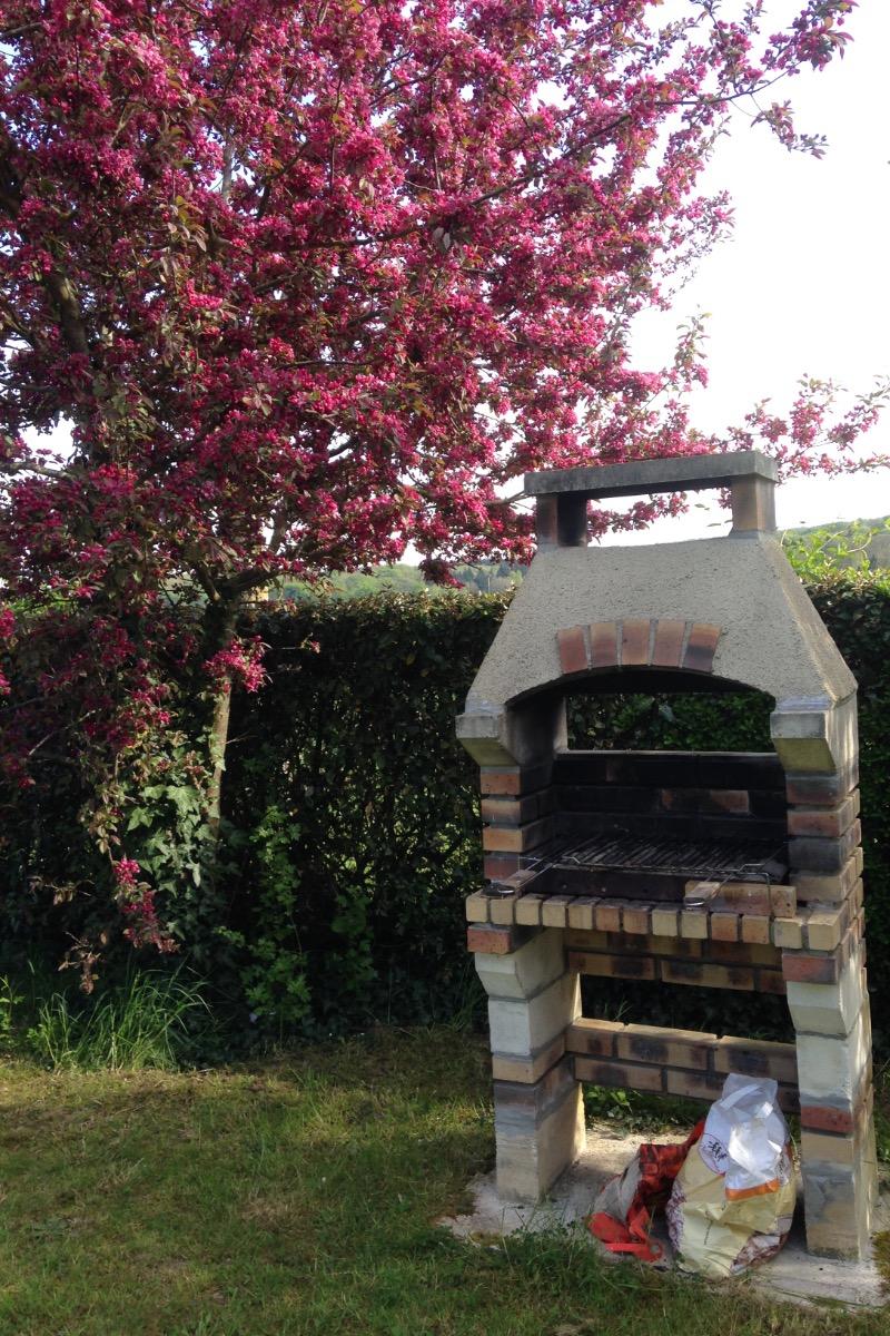 Profitez du barbecue entre amis ou en famille  - Location de vacances - Champcueil