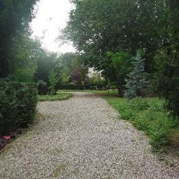 Grand jardin arboré intérieur de la résidence - Chambre d'hôtes - Neuilly-sur-Seine