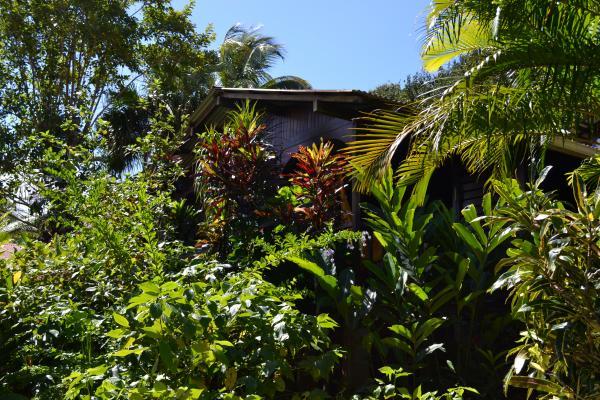 Le bungalow - Location de vacances - Deshaies