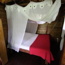 chambre aux bananes vertes - Location de vacances - Saint-Claude