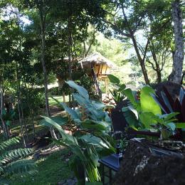 cabane de ZOE - Chambre d'hôtes - Vieux-Habitants