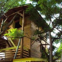 Talipo vu depuis l'entrée du nid - Location de vacances - Pointe-Noire