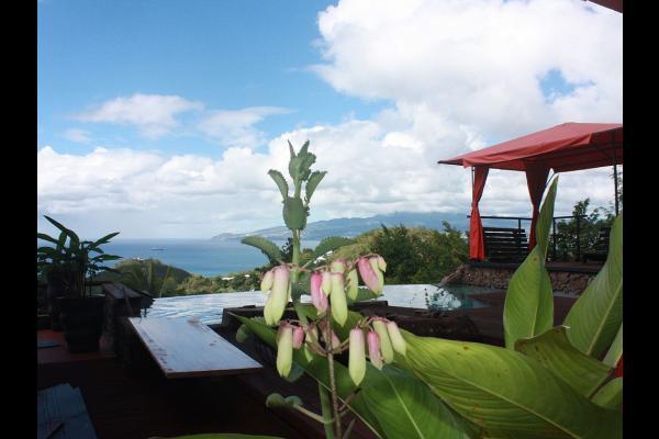 vue exterieure - Location de vacances - Les Trois-Îlets