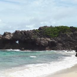 Anse grosse roche - Location de vacances - Le Marin