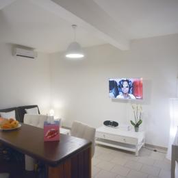Séjour climatisé avec canapé convertible, TV 40 pouces avec Satellite VOD et TNT, bar, cuisine américaine - Location de vacances - Cayenne