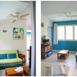 Espace salon avec canapé BZ grand confort - Location de vacances - Saint-Leu