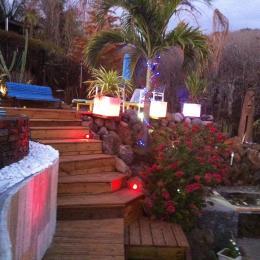 jardin de nuit - Location de vacances - Saint-Leu
