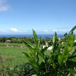 vue des terrasses - Location de vacances - Saint-Pierre