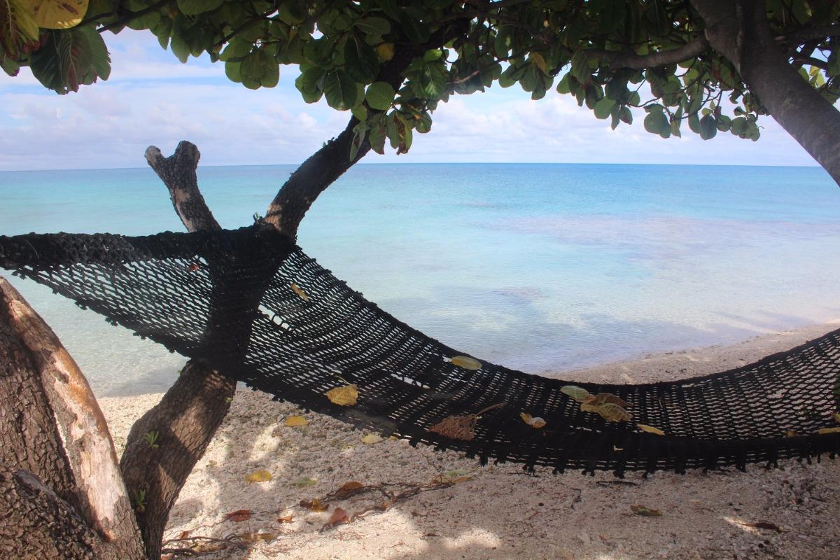 Hamac face à l'immense lagon de Rangiroa. - Chambre d'hôtes - Rangiroa