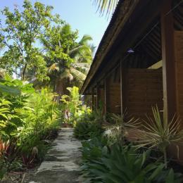 - Chambre d'hôtes - Taiarapu-Est